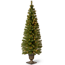 "National Tree Company 6' Montclair Spruce Entrance Tree in 13"" Black/Gold Plastic Pot with 150 Clear Lights"