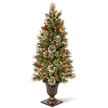 National Tree 4' Wintry Pine Entrance Tree Cones, Red Berries and Snowflakes with 50 Clear Lights