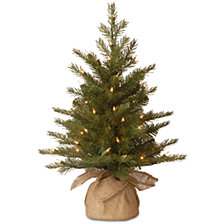 "National Tree Company 2' ""Feel Real"" Nordic Spruce Small Tree in Burlap with 50 Clear Lights"