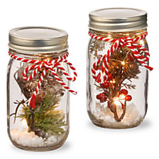 National Tree Glass Pot with X'mas Accents LED Lights-Set of 2-Red Berry Bird Nest