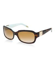 Ralph Lauren Polarized Sunglasses , RA5049