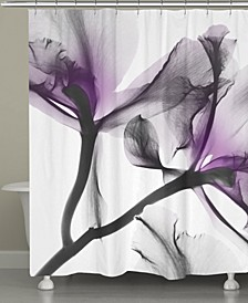Lavendar Flwr Shower Curtain