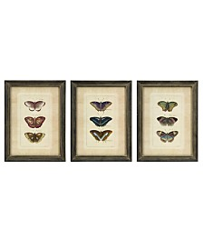 Imax Butterfly Collection Wall Art - Set of 3