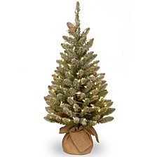 National Tree 3' Snowy Concolor Fir Small Tree in Burlap with Snowy Cones Warm White Battery Operated LEDs with Timer