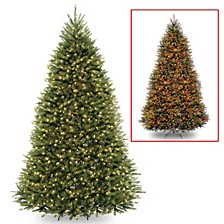 National Tree 12' Dunhill Fir Tree with 1200 Dual Color LED Lights and Power Connect