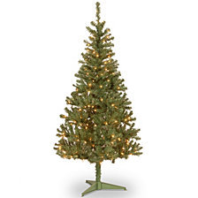 National Tree 6 FT Canadian Grande With 200 Clear Lights