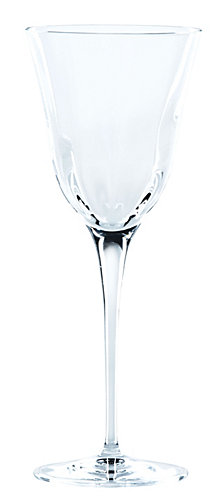 Vietri Optical Clear Water Glass