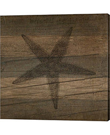 Rustic Starfish By Tammy Apple Canvas Art