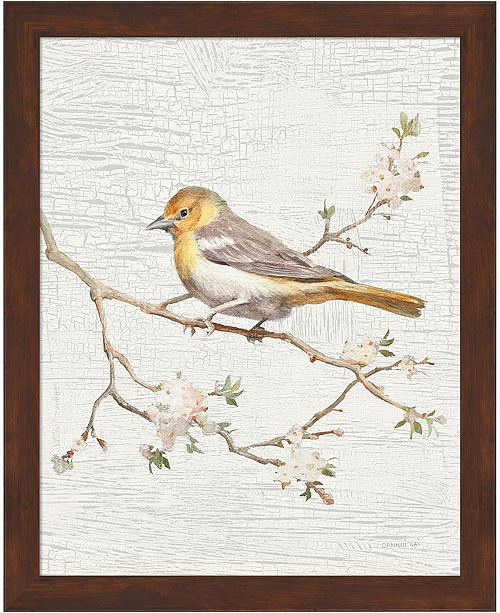 Metaverse Northern Oriole Vint By Danhui Nai Framed Art