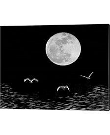 Moon Flight Delray B By Monte Nagler Canvas Art