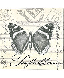 Vintage Butterfly Ii By Andrea Haase Canvas Art