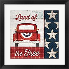 Land of the Free by Jennifer Pugh Framed Art