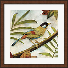 Jungle Bird I by Edward Selkirk Framed Art