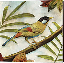 Jungle Bird I by Edward Selkirk Canvas Art