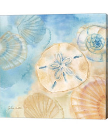 Watercolor Shells 3 by Cynthia Coulter Canvas Art