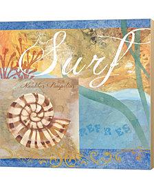 Seashells Iv By Fiona Stokes-Gilbert Canvas Art