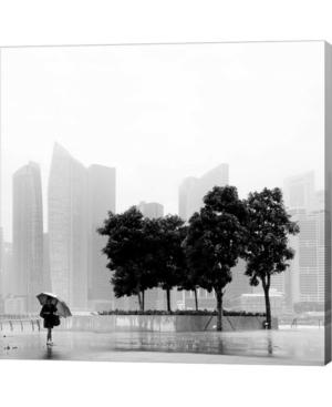 Singapore Umbrella By...