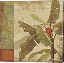 Planta By Posters International Studio Canvas Art