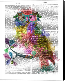 Rainbow Splash Owl by Fab Funky Canvas Art