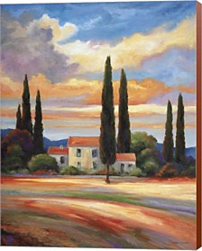 Sunset In Provence By John Zaccheo Canvas Art