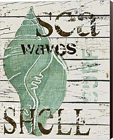 Green Seashell by Karen J. Williams Canvas Art