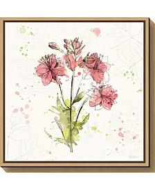 Amanti Art Floral Splash V by Katie Pertiet Canvas Framed Art