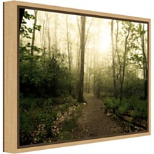 Amanti Art Appalachian Trail by Andy Magee Canvas Framed Art