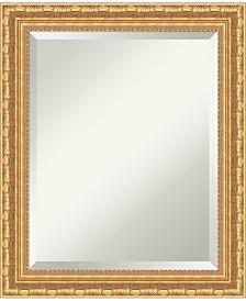 Amanti Art Versailles 20x24 Bathroom Mirror