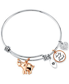Unwritten Lucky and Blessed Elephant Charm Bangle Bracelet in Stainless Steel & Rose Gold-Tone