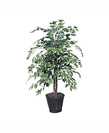 4' Artificial Variegated Ficus Bush, Made With Real Tag Alder Trunks