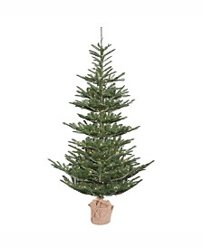 "Vickerman 5"" Alberta Spruce Artificial Christmas Tree"