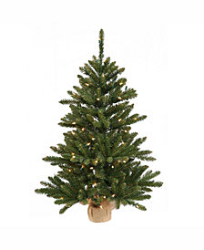 Vickerman 30 inch Anoka Pine Artificial Christmas Tree With 50 Warm White Led Lights