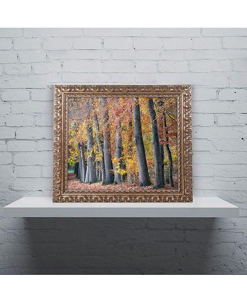 """Trademark Global Cora Niele 'Autumn Beeches I' Ornate Framed Art, 11"""" x 14"""""""