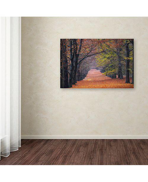 "Trademark Global Cora Niele 'Beech Lane' Canvas Art, 22"" x 32"""