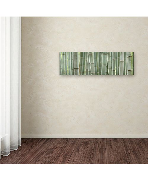 "Trademark Global Cora Niele 'Grey Bamboo Scape' Canvas Art, 8"" x 24"""