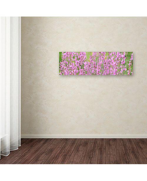 "Trademark Global Cora Niele 'Pink Flower Scape' Canvas Art, 8"" x 24"""