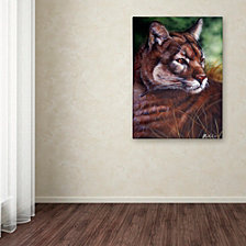 Jenny Newland 'Watchful Eyes II' Canvas Art