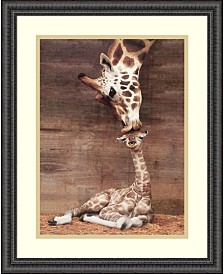 "Amanti Art Makulu - Giraffe First Kiss Framed Art Print - 22"" x 18"""