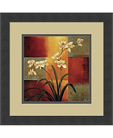 Amanti Art White Orchid Framed Art Print