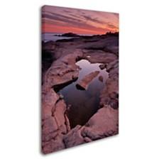 "Michael Blanchette Photography 'Tide Pool Geometry' Canvas Art, 12"" x 19"""