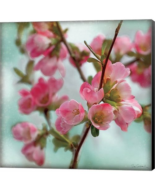 Metaverse Quince Blossoms II by Pela Studio Canvas Art