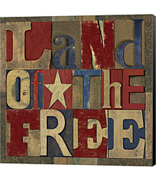 Patriotic Printer Block II by David Knowlton Canvas Art