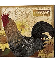 Rooster by Fiona Stokes-Gilbert Canvas Art