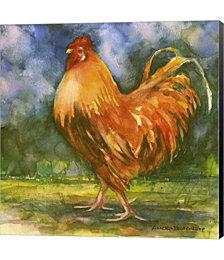 Rooster Field by Annelein Beukenkamp Canvas Art