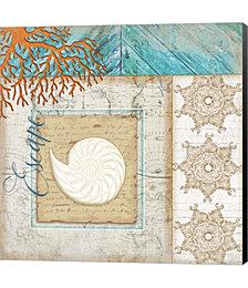 Coastal Nautilus Shell by Jennifer Pugh Canvas Art