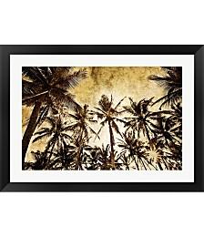 Coconut Palms by Skip Nall Framed Art