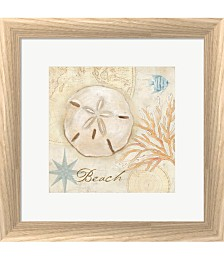 Nautical Shells IV by Cynthia Coulter Framed Art