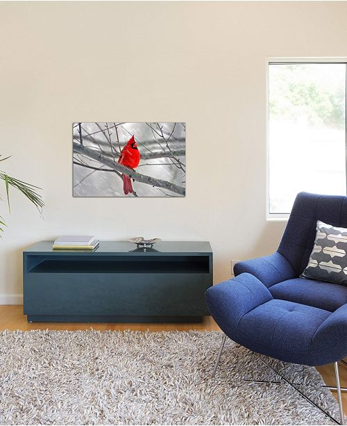 "iCanvas ""Cardinal Bird"" Gallery-Wrapped Canvas Print (26 x 40 x 0.75)"