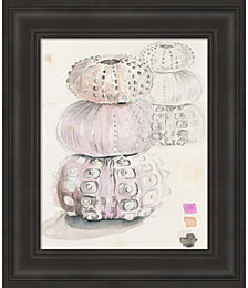 Sea Urchin Sketches II by Jennifer Parker Framed Art