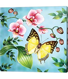 Nawab by Rosiland Solomon Canvas Art